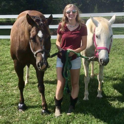Sara and her horses